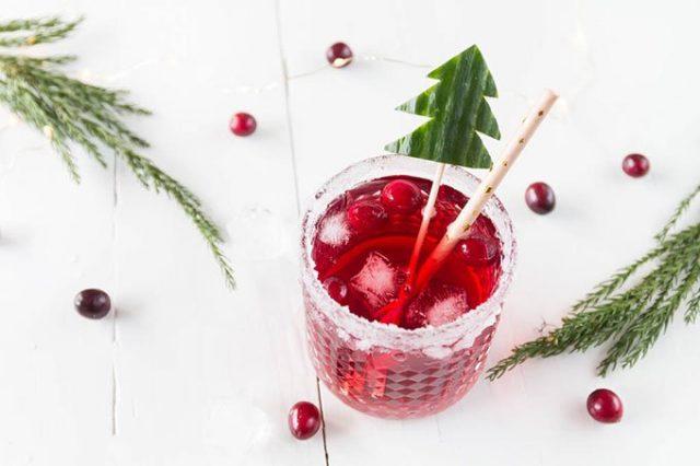 Gin tonic cranberry.jpg