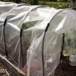 Diy garden cloche ideas 5.jpg