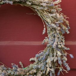 Dried lavender wreath on a red door.jpg