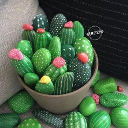 Rocks cactus.jpg