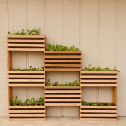 How to make a vertical garden feature 3_large.jpg