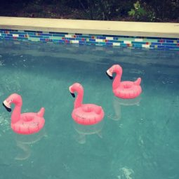 Pool party inflatables.jpg